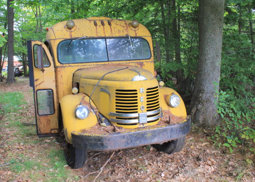 Just Old Buses