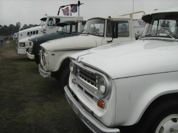 http://forums.justoldtrucks.com/uploads/images/cf181c7f-0767-4850-ae4e-f8f7.jpg